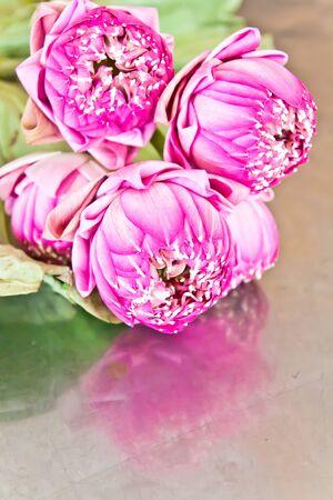 Purple lotus flowers are on the aluminum photo