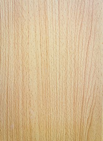 Pattern of the wood texture background Stock Photo - 12916643
