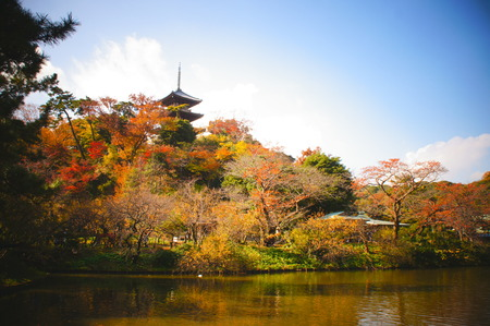 field maple: Japanese garden with ancient tower. Stock Photo