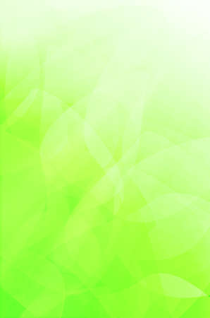 abstract green curves background.  photo