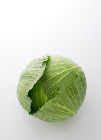 green cabbage on the white background