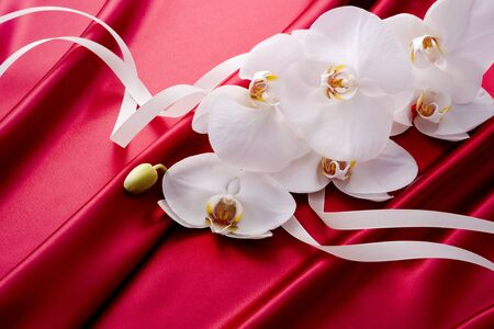 Beautiful white orchid with ribbon is on red satin. photo