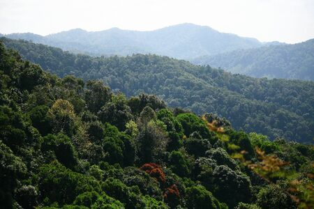 The mountains of northern Thailand  photo