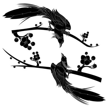 black bird Иллюстрация