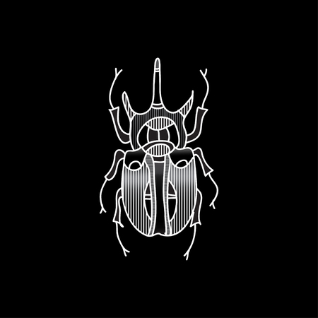 vector beetle icon for design