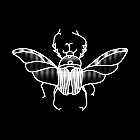 entomologist: vector beetle icon for design