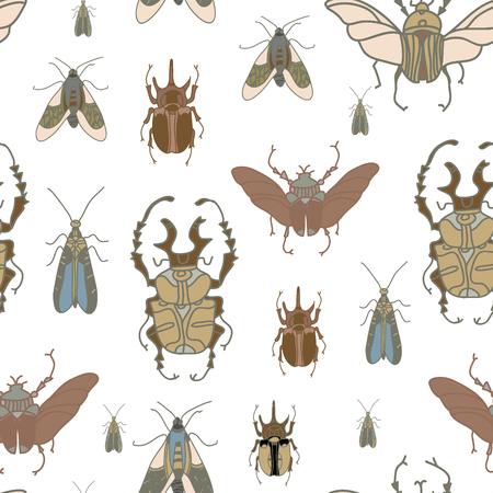 entomologist: Vector seamless pattern with beetles