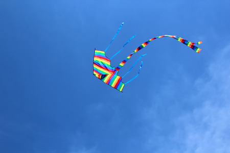 kite flying: Bright colorful kite in the blue sky.