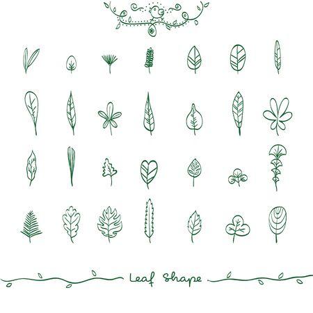leaf shape: Vector Illustration of Doodle Leaf Shape Outline, Hand Drawn