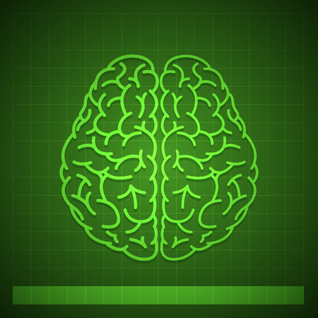 imagine a science: Illustration of Human Brain Concept on Green Background