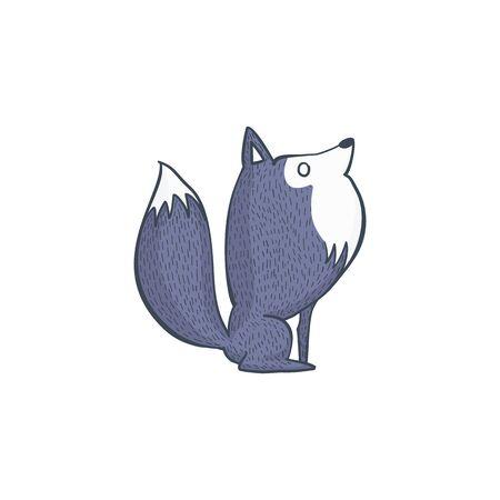 gray wolf: Illustration of Gray Wolf, Cartoon Character Hand Draw Illustration