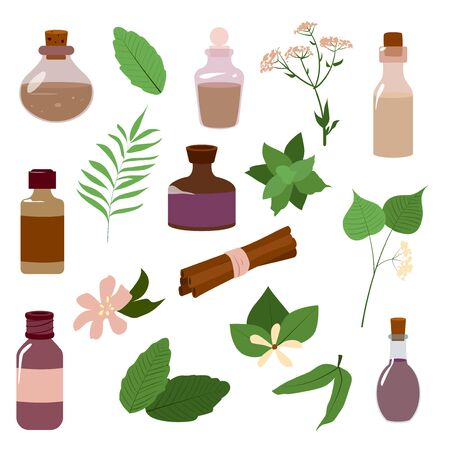 Vector set of aromatic oil and flowers and plant isolated illustrations. Natural medicine and aromatherapy. Eco, ecological. Jars and bottles isolated on a white background.