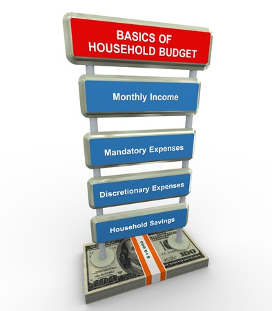 home expenses: 3d render of household budget basics concept