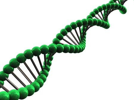 3d render of dna molecule photo