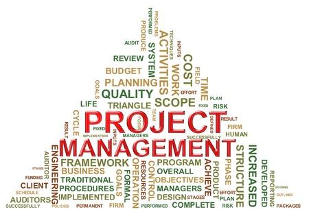 capitel: Ilustración de la gestión de proyectos wordcloud Foto de archivo