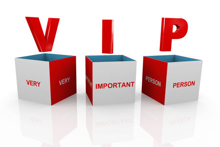 magnificent: 3d illustration of acronym vip very important person box.