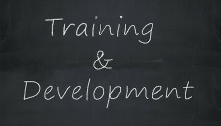 Illustration of training and development written on black chalkboard illustration