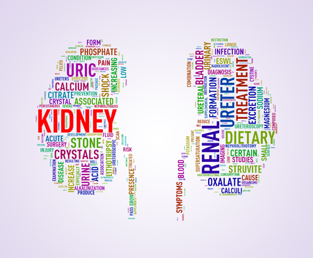 dialysis: Illustration of kidney shape wordcloud word tags presenting kidney stone diseases Stock Photo