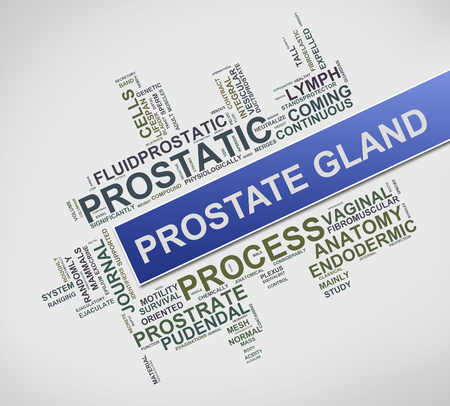Illustration of word cloud tags related to prostate gland