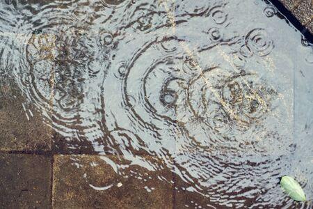 Rain drops on wet pavement, flat view Imagens
