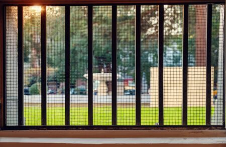 Wiev of the park at sunset through the gridded window, selective focus Foto de archivo