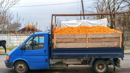 A small blue truck full of mandarins or tangerines