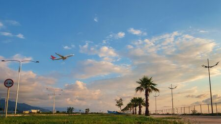 A passenger plane flying up in the blue and cloudy sky over the field with palm trees
