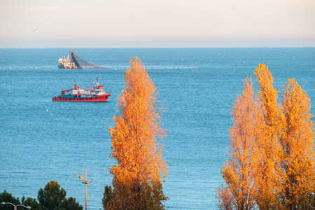 Two fishing trawler at the blue sea catching a fish with orange poplars foreground