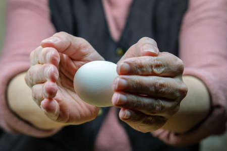 Hands of a woman perform a magic trick with the egg. Levitation of the egg in the air, selective focus
