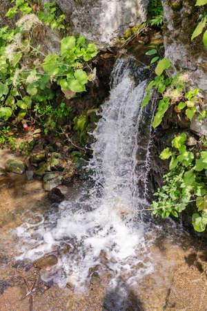 Beautiful hidden little waterfall running through the plants Banque d'images