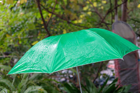 Wet green umbrella with blurred nature background Banque d'images