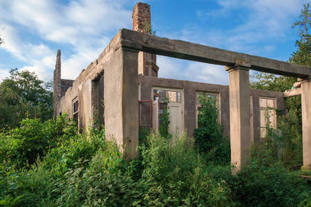 Old abandoned wrecked house in overgrown with green plants