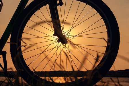 Close-up silhouette of a bike wheel at sunset. The sun shines through the wheel of a bicycle, selective focus