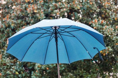 Openl umbrella on the nature blurred background 版權商用圖片