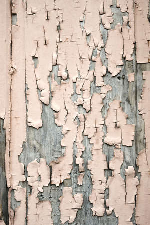 Peeling pink paint on the old rough wooden surface, peeling paint texture