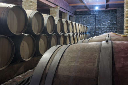 Row of oak barrels in a dry cool wine cellar in basement 新聞圖片
