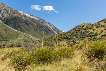 New Zealand Southern Alps landscape Stock Photo