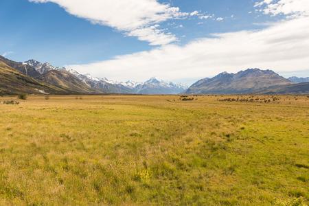 Green valley with a snowy peak on a horizon 版權商用圖片
