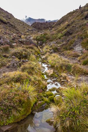 Mountain stream at Tongariro, New Zealand