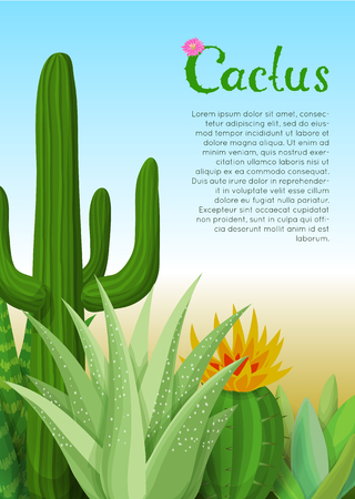succulent: Cacti and succulents poster. Background with blooming cactus and succulent.