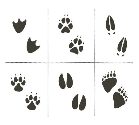Traces of animals vector illustration. Animals footprints