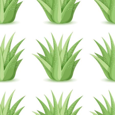 Agave - seamless con piante del deserto. La natura di fondo floreale con foglia succulenta verde. Carta da parati con piantagione di aloe. illustrazione di vettore Archivio Fotografico - 62675036