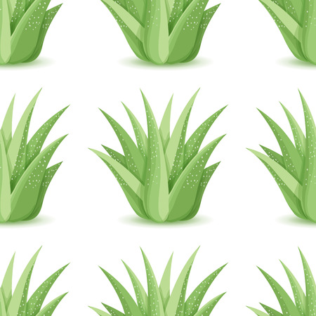 Agave - seamless pattern with desert plants. Nature floral background with green succulent leaf. Wallpaper with plantation of aloe. Vector illustration Ilustracja