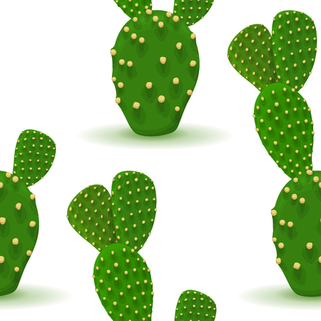 Prickly pear seamless pattern. Opuntia cactus. Vector background with desert plant. Green succulent on a white. Botanical illustration