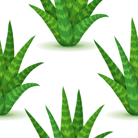 plantas del desierto: Aloe vera - seamless pattern with desert plants. Nature floral background with green succulent leaf. Wallpaper with plantation of aloe. Vector illustration Vectores