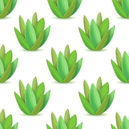 aloe vera plant: Agave - seamless pattern with desert plants. Nature floral background with green succulent leaf. Wallpaper with plantation of aloe. Vector illustration Illustration