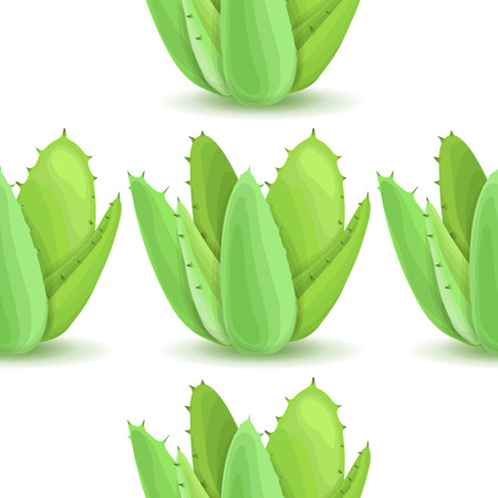 plantation: Agave - seamless pattern with desert plants. Nature floral background with green succulent leaf. Wallpaper with plantation of aloe. Vector illustration Illustration