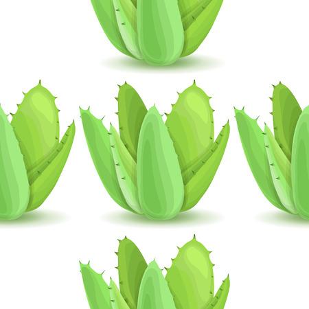 plantas del desierto: Agave - sin patrón, con las plantas del desierto. La naturaleza de fondo floral con hojas suculentas verde. Papel pintado con la plantación de aloe. ilustración vectorial