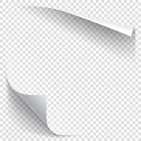 White gradient paper curl with shadow isolated on transparent background. Vector sticker paper note for memo and notice. Vector template illustration for your design  イラスト・ベクター素材
