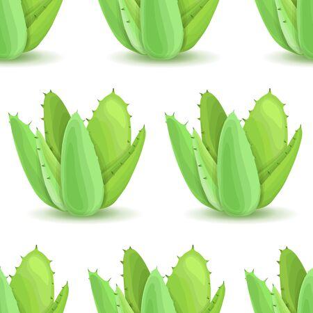 plantas del desierto: Agave - sin patr�n, con las plantas del desierto. La naturaleza de fondo floral con hojas suculentas verde. Papel pintado con la plantaci�n de aloe. ilustraci�n vectorial